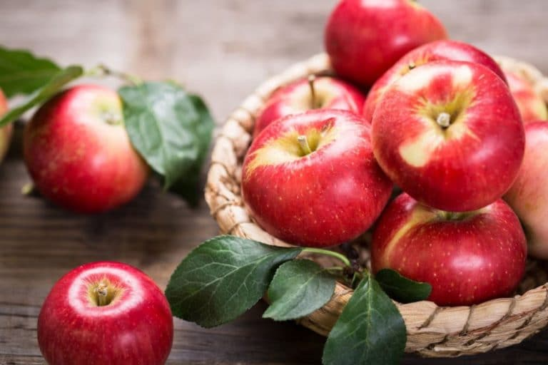 What's in Season – Australian Seasonal Produce Guide for Autumn