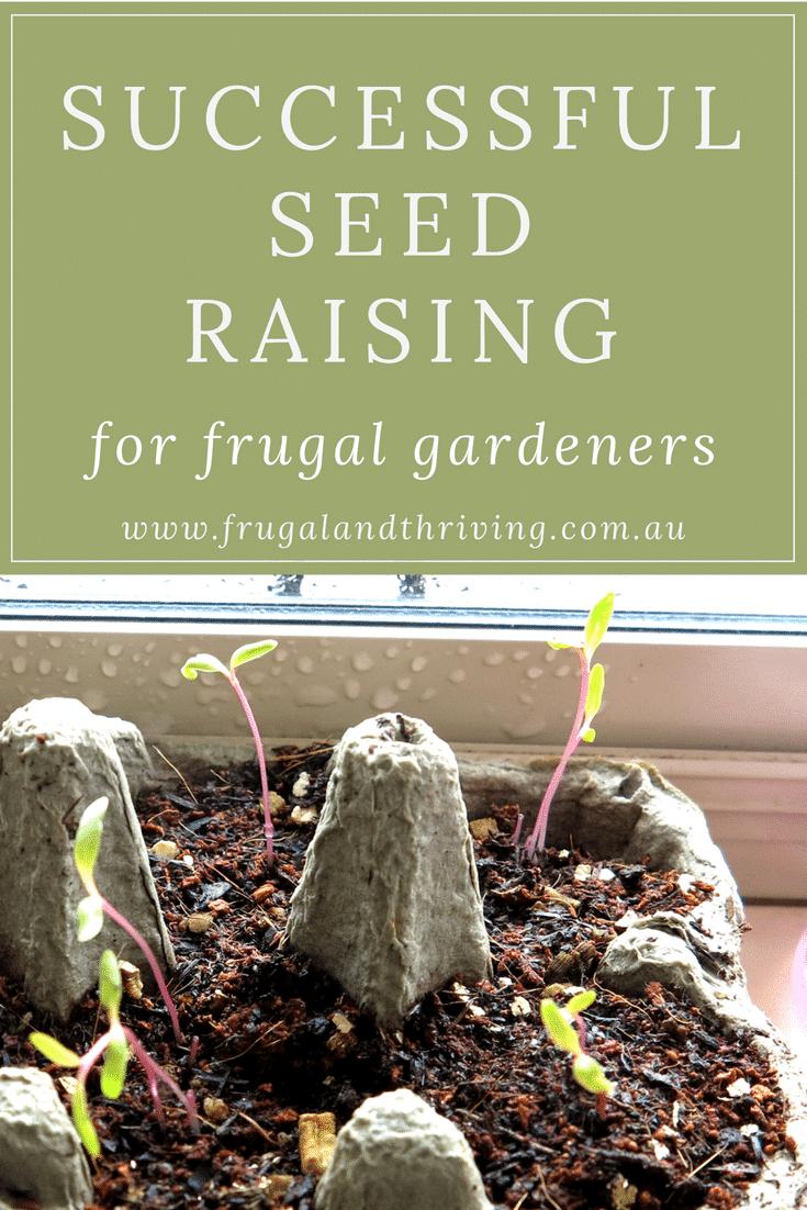 frugal seed raising