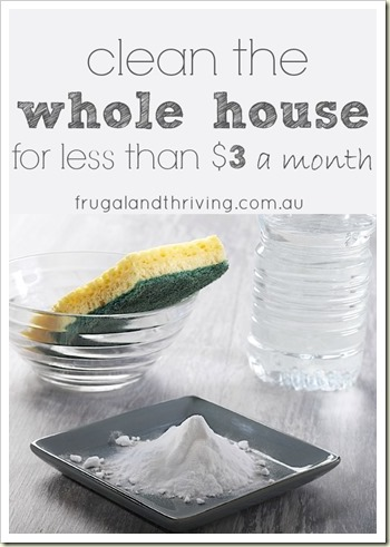 clean the whole house for less than $3 a month2