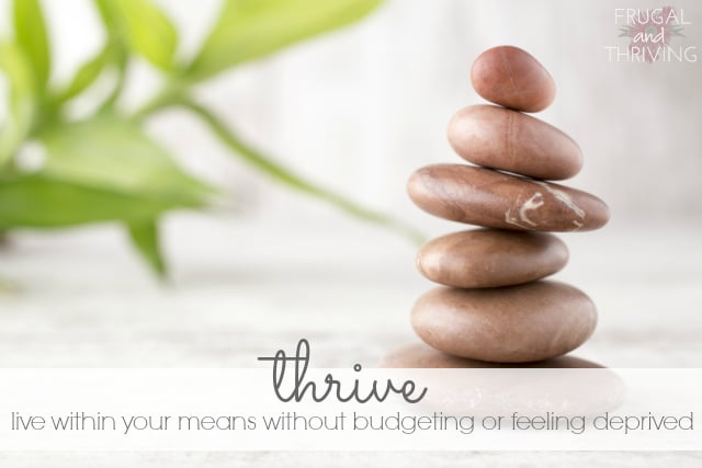 Thrive on a budget without feeling deprived