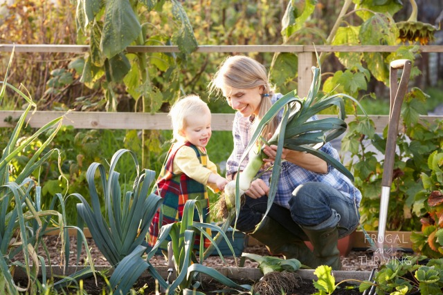 What Mums Need to Know to Maximise Their Superannuation