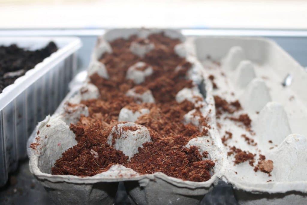 repurpose egg carton as seed tray. Ways to reuse egg cartons